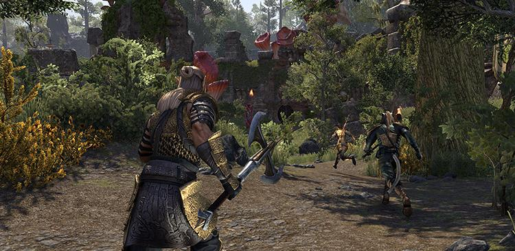 eso battleground